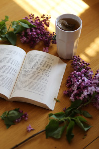 Recenzja książki Podróż na sto stóp