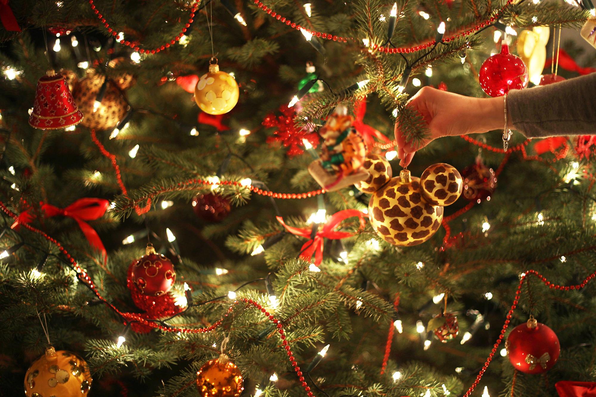 Nieznane piosenki świąteczne